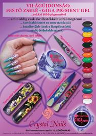 Szépvilág - Giga Pigment festőzselé - 2010-04-15